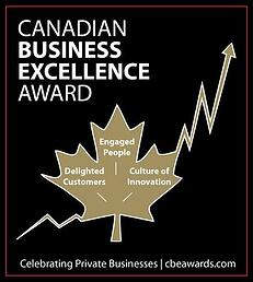 Excellence infographic image