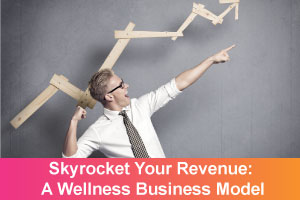 skyrocket-revenue---business-model-1
