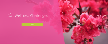 wellness-challenges-2